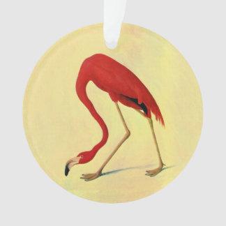 Pintura americana del flamenco de Audubon