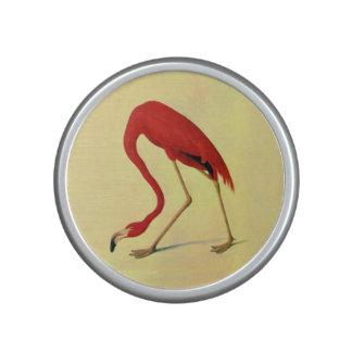 Pintura americana del flamenco de Audubon Altavoz Con Bluetooth
