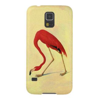 Pintura americana del flamenco de Audubon Carcasa Galaxy S5