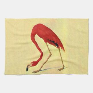 Pintura americana del flamenco de Audubon Toallas