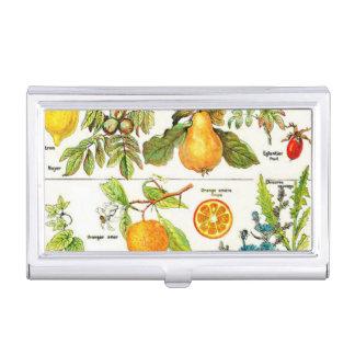 Pintura anaranjada de la uva de la pera de la cajas de tarjetas de presentación