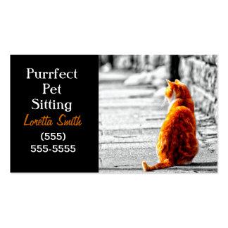 Pintura anaranjada teñida A-PAL del gato de Tabby  Tarjetas De Visita