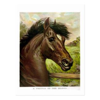 pintura antigua maravillosa del litho del caballo postal