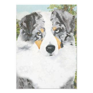 Pintura australiana del retrato del perro de fotografías