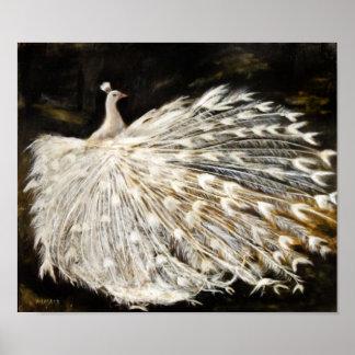 Pintura blanca del pavo real poster
