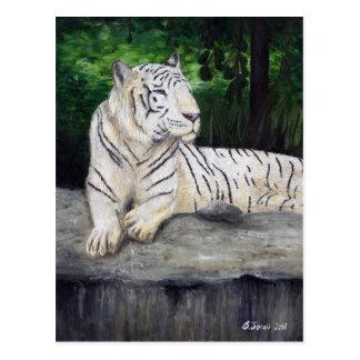 Pintura blanca del tigre de Ben Jones Postal