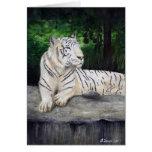 Pintura blanca del tigre de Ben Jones Felicitaciones