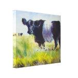 Pintura ceñida de la vaca de Galloway Impresión De Lienzo