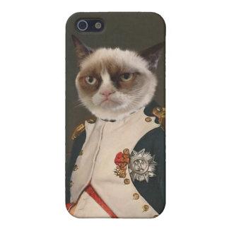 Pintura clásica del gato gruñón iPhone 5 fundas