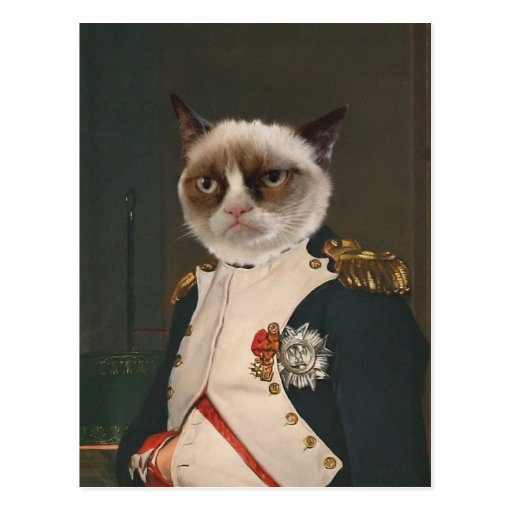 Pintura clásica del gato gruñón tarjeta postal