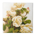 Pintura color de rosa de marfil del Victorian Teja