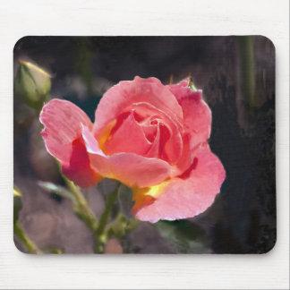 Pintura color de rosa mouse pads
