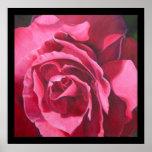 Pintura color de rosa rosada con el poster negro d