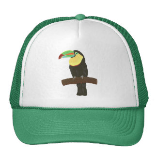 Pintura colorida de Toucan en los gorras