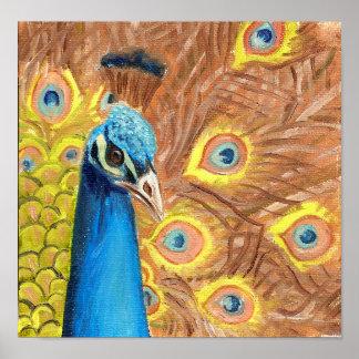 Pintura colorida del detalle del pavo real impresiones
