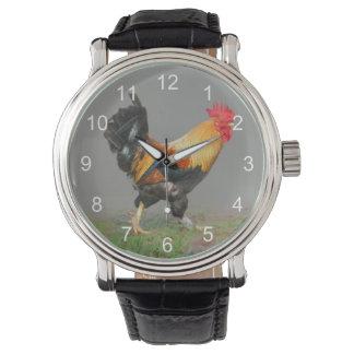 Pintura colorida del gallo reloj de mano