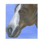 Pintura de acrílico del arte del caballo bloc