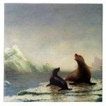 Pintura de Albert Bierstadt, sellos Azulejo Cuadrado Grande
