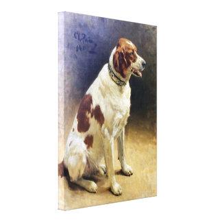 Pintura de Irish Setter del vintage Lona Envuelta Para Galerias