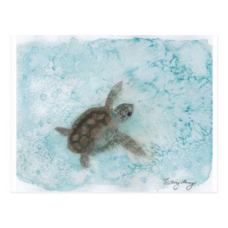 Pintura de la acuarela de la tortuga postales