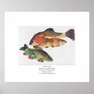 Pintura de la acuarela de tres pescados póster
