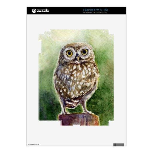 Pintura de la acuarela del pequeño búho iPad 2 calcomanías