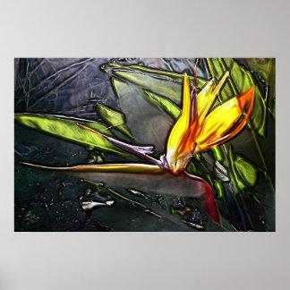 Pintura de la ave del paraíso póster