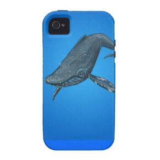 Pintura de la ballena jorobada vibe iPhone 4 fundas