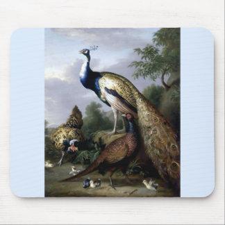 Pintura de la familia de pájaro del pavo real alfombrillas de ratones