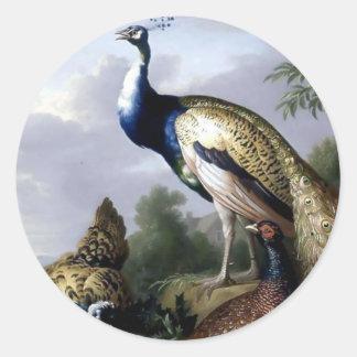 Pintura de la familia de pájaro del pavo real pegatina redonda