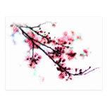 Pintura de la flor de cerezo tarjeta postal