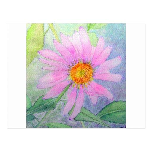 Pintura de la flor del Echinacea Tarjeta Postal