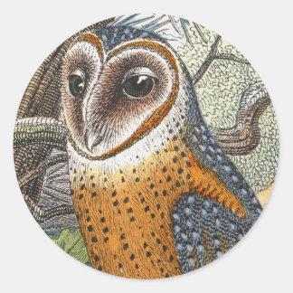 Pintura de la lechuza común del vintage pegatina redonda