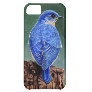 Pintura de la lona del Bluebird