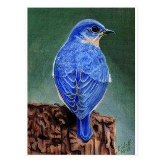 Pintura de la lona del Bluebird Postal