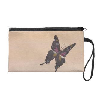 Pintura de la mariposa del swallowtail