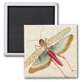 Pintura de la mosca del dragón - imán 1B