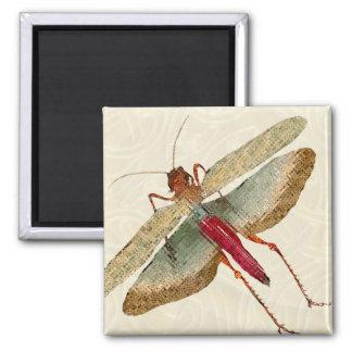 Pintura de la mosca del dragón - imán 4B