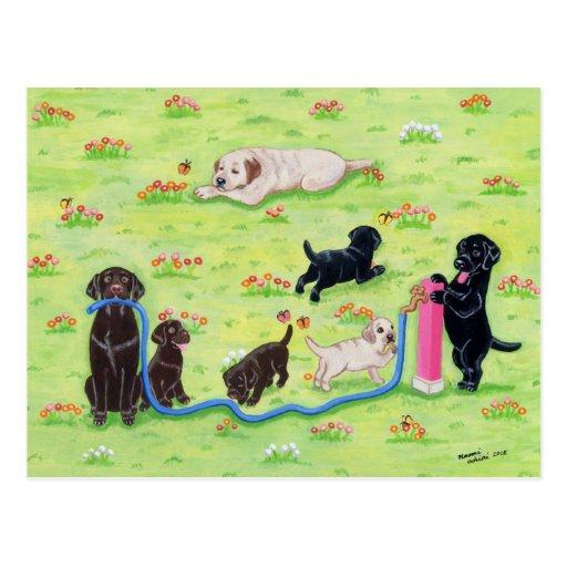 Pintura de Labradors de la diversión de la Tarjeta Postal