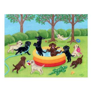 Pintura de Labradors de la diversión del verano Postal