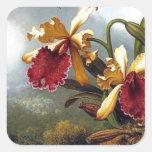 Pintura de las orquídeas del colibrí calcomanías cuadradass