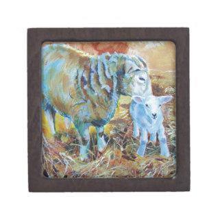 Pintura de las ovejas y del cordero cajas de recuerdo de calidad