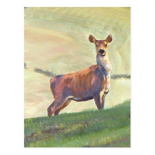 Pintura de los ciervos postal