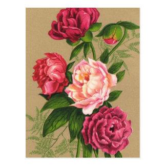 Pintura de los rosas rosados y rojos postal