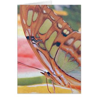 Pintura de oro de la mariposa tarjeta de felicitación