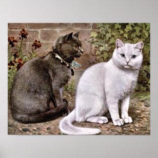 Pintura de pelo corto del vintage de los gatos póster