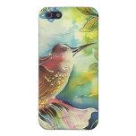 Pintura de seda del arte del colibrí colorido iPhone 5 carcasas