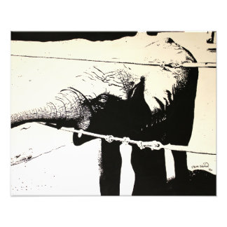 Pintura del alto contraste del elefante cojinete