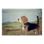 Pintura del beagle del vintage - poster