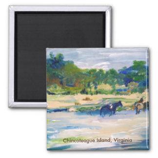 Pintura del caballo de la isla de Chincoteague Imán Cuadrado